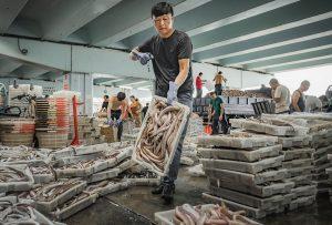 Cheng,-Zhu---China-(dayangclub61@163.com)---Wharf-Life1