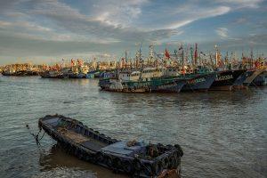 Cheng,-Zhu---China-(dayangclub61@163.com)---Wharf-Life5