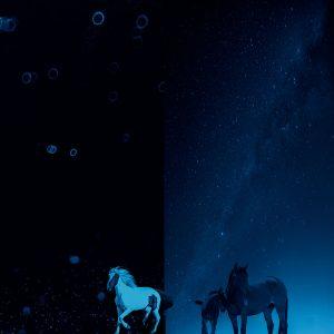 Ciliang,-Ren---China-(dayangclub66@163.com)---Fine-Horse2