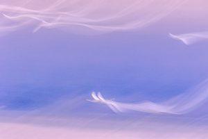 Jinzi,-Song---China-(51574221@QQ.COM)---Dream-Angels4