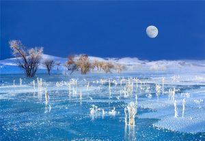 Jiuli,-Ji---China-(51574221@QQ.COM)---Grassland-Scene7