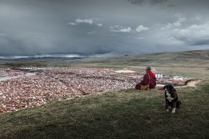 Qinghan,-Wang---China-(dayangclub16@163.com)---Life-Of-Monks5