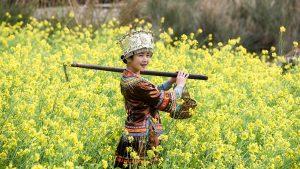 Wei,-Chen---China-(dayangclub81@163.com)---Beautiful-Girl