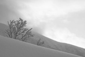 Yi,-Gu---China-(dayangclub22@163.com)---The-Charm-Of-Winter4