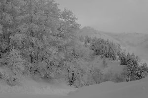 Yi,-Gu---China-(dayangclub22@163.com)---The-Charm-Of-Winter7