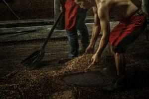 Yong,-Zeng---China-(dayangclub77@163.com)---Brewing8