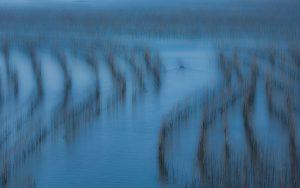 Ziyan,-Li---China-(dayangclub97@163.com)---Life-Of-People-By-The-Sea7